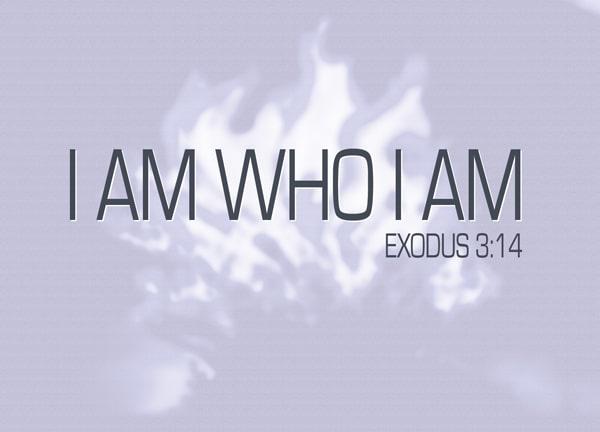 I Am Who I Am Sayings And I Am Who I Am Quotes Tech Inspiring Stories