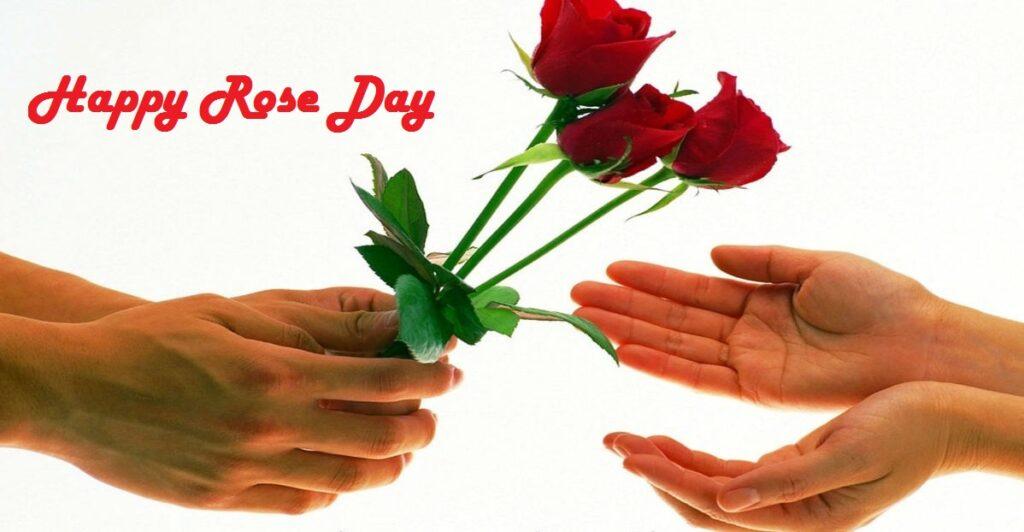 Happy Rose Day 1