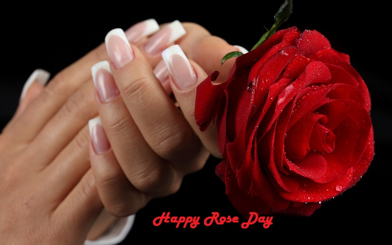 Happy Rose Day 2