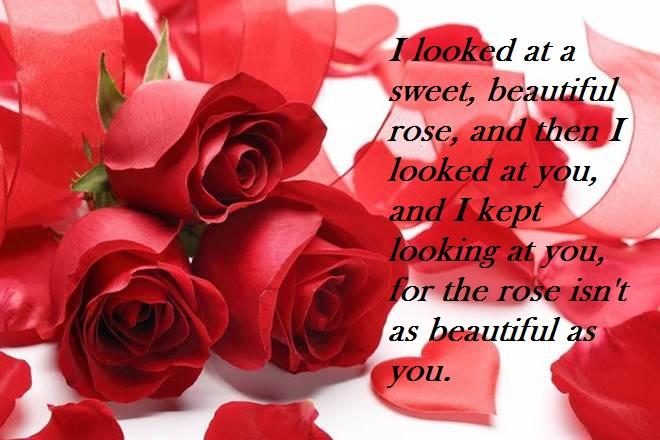 Happy Rose Day 3
