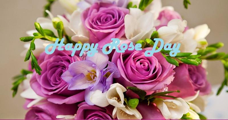 Happy Rose Day