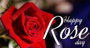 Famous Happy Rose Day Quotes