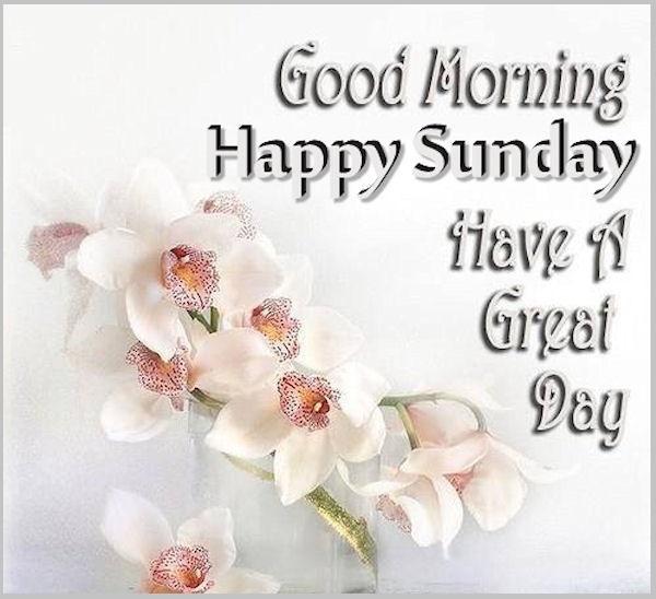 Happy Sunday 4