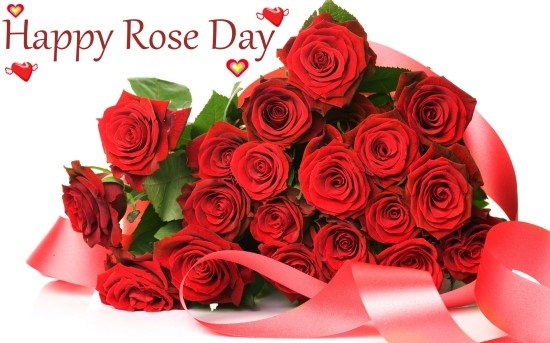 Happy rose day 1