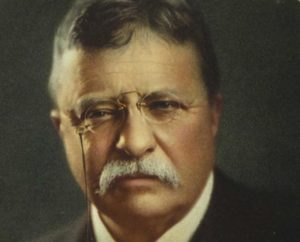 Motivational Theodore Roosevelt Quotes