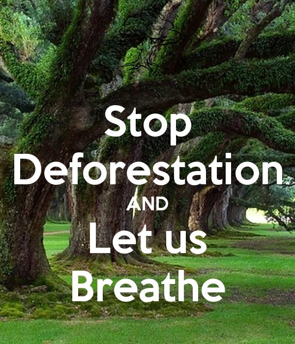 SLOGANS ON DEFORESTATION
