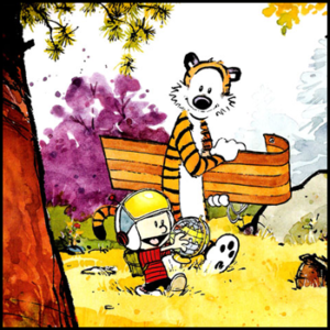 Motivational Calvin and Hobbes Quotes