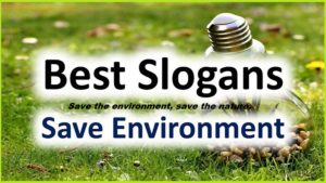 Famous Slogans on Environment for Students