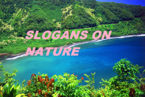 Slogans on Nature Conservation in English for Students