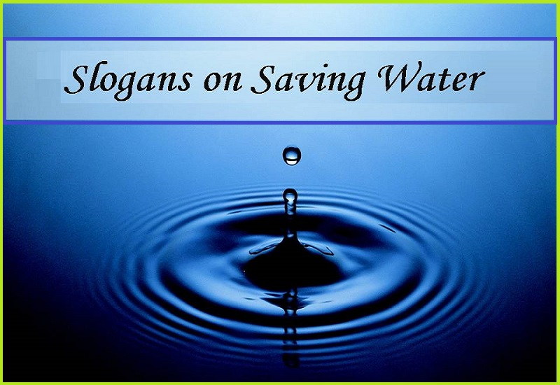 Save Water and Save Lives on Earth