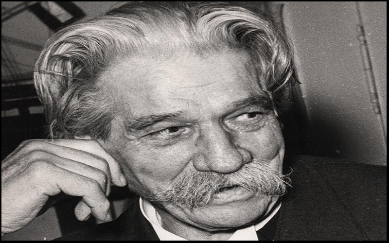Read more about the article Motivational Albert Schweitzer Quotes and Sayings