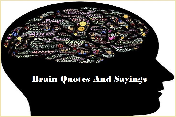 Brain Quotes And Sayings