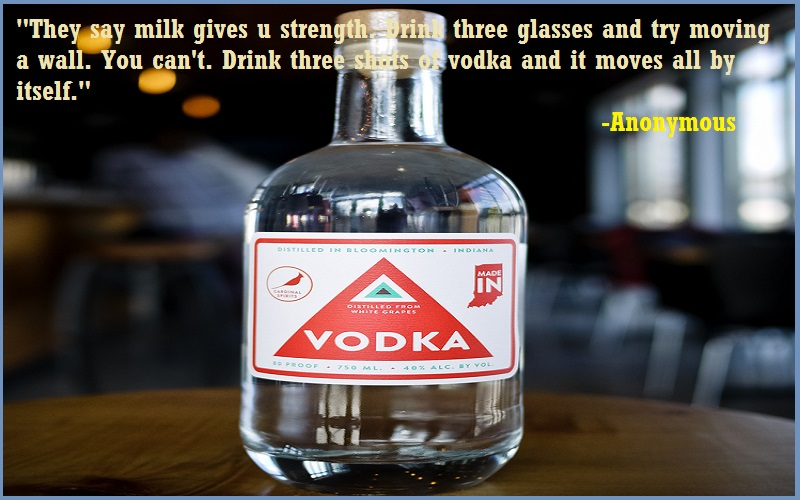 Inspirational Vodka Quotes & Sayings