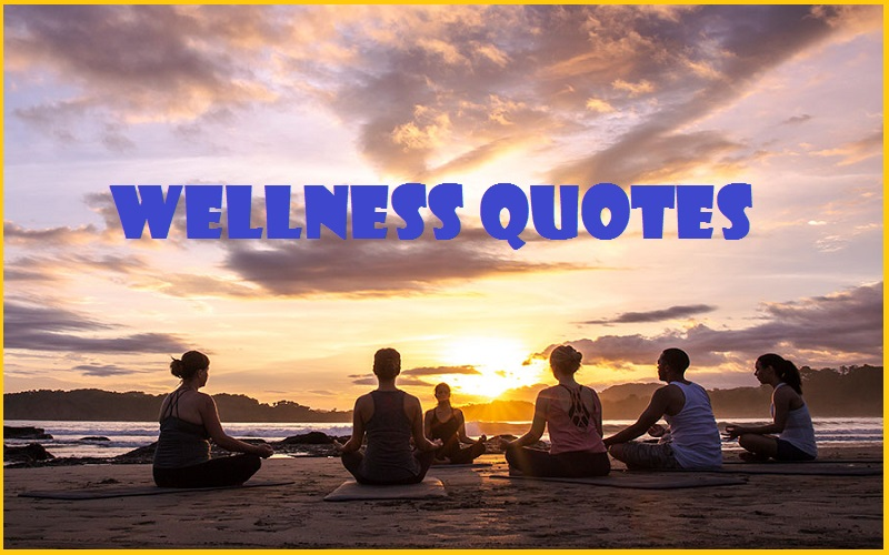 Wellness Quotes & Sayings