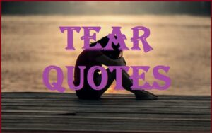 Read more about the article Motivational Tear Quotes And Sayings
