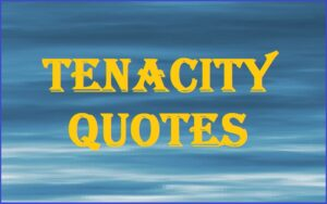 Read more about the article Motivational Tenacity Quotes And Sayings