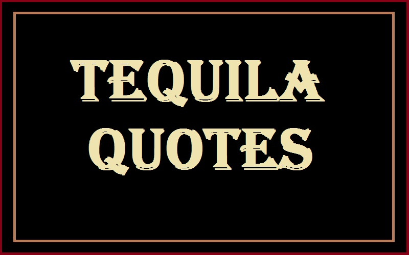 Read more about the article Motivational Tequila Quotes And Sayings