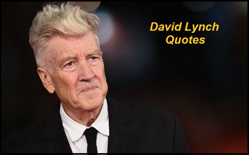 Motivational David Lynch Quotes And Sayings