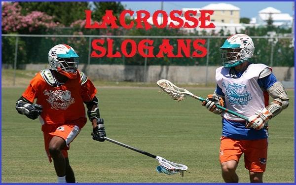 Read more about the article 50+ Famous Lacrosse Slogans And Taglines