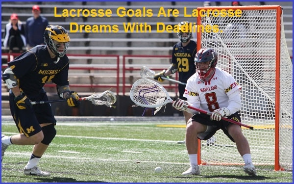 Catchy Lacrosse Slogans And Taglines
