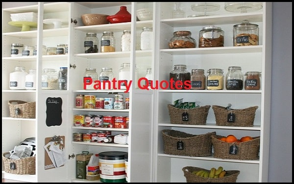 Read more about the article Motivational Pantry Quotes And Sayings