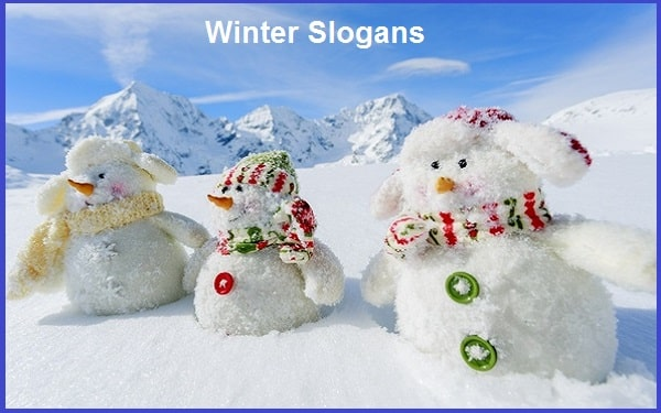 Read more about the article 40+Famous Winter Slogans And Taglines