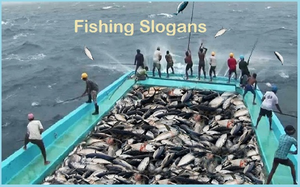 Read more about the article 40+ Famous Fishing Slogans And Taglines