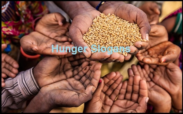 Read more about the article 70+ Famous Hunger Slogans And Sayings