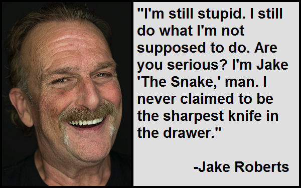 Inspirational Jake Roberts Quotes And Sayings