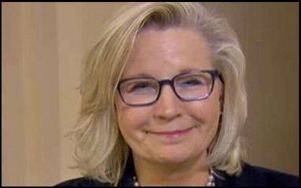 Read more about the article Motivational Liz Cheney Quotes And Sayings