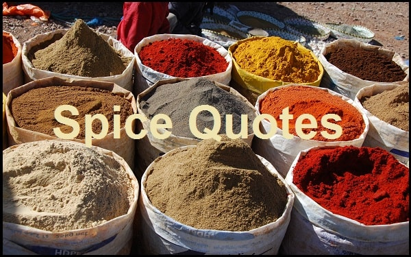 Motivational Spices Quotes And Sayings