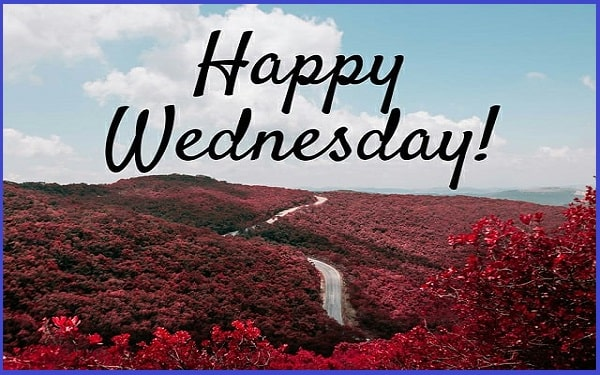 You are currently viewing Inspirational Wednesday Quotes And Sayings