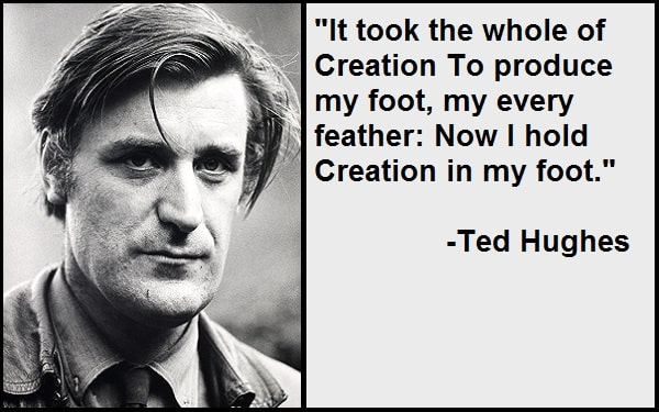 Inspirational Ted Hughes Quotes