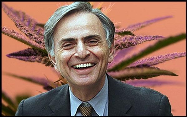 Motivational Carl Sagan Quotes And Sayings