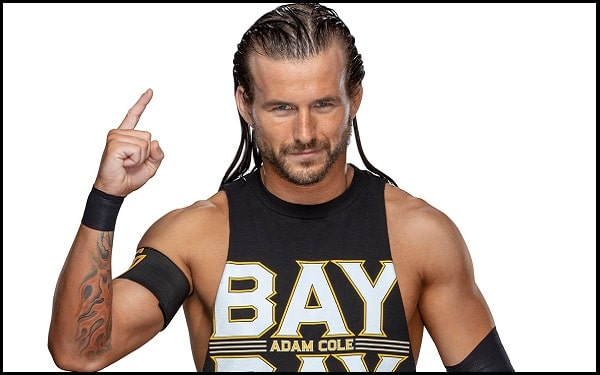 Motivational Adam Cole Quotes And Sayings